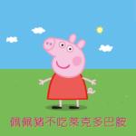 反萊豬公投連署書 (二階段) 下載、領取教學 828 救台灣